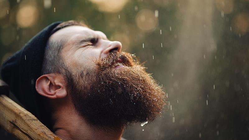 Советы перед покупкой выпрямителя для бороды